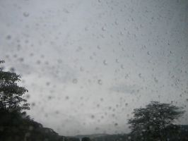 Rainy Days in Costa Rica4 by AudiVideTace