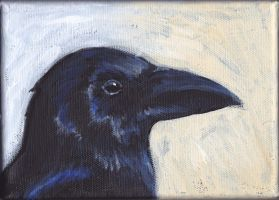 Crow portrait by nienor