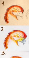 Eagles Head ~Shading Tutorial by EleanorTopsie