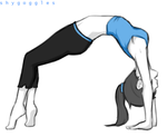Wii Fit Trainer by shyGoggles