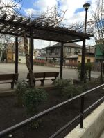 Park benches near my apartment by EiraQueenofSnow