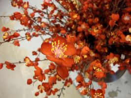 Plum Blossoms by zozi333