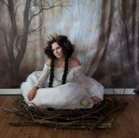 bird 3 by magikstock