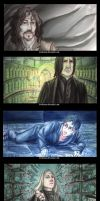 Harry potter -and the order of the phoenix- by Keidensan