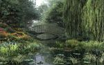 The Willow Pond by DIGITAL-DOM