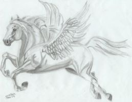 And They Call Him Pegasus by stiflersgirl