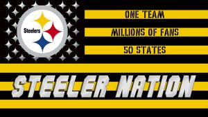 Steeler Nation Flag by HowlingWolf79