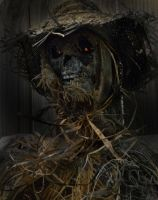 Scarecrow haunted by blablover5