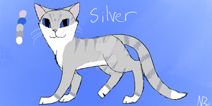 Silver Reference Sheet by SilverOrcaaKitty17