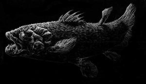 Coelacanth by Makowh