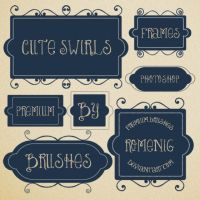Cute Swirls Tags Brushes by Romenig