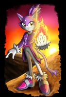 Blaze the cat by zeiram0034