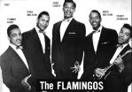 The Flamingos in 1957 by slr1238