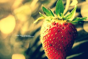 Strawberry by Snock7