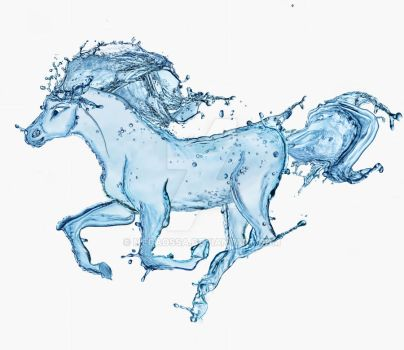 Water horse by megaossa