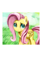 fluttershy by queridoor