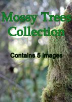 Mossy Trees Collection by Blinded-Stock