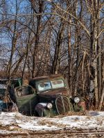 37 Ford (7940) by WayneBenedet