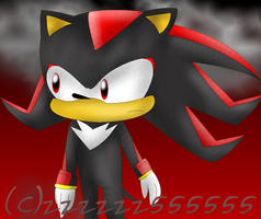 Shadow by 222222555555