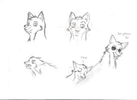 expressions by Kasun05