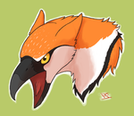 screech by fox-bird