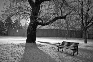 Bench in Snow At Night 2 by kenjis9965