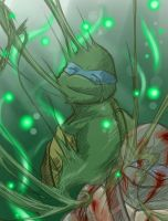 TMNT-thanks and... sorry by tmask01