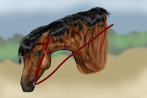 How to train your racehorse.. by patchesofheaven74