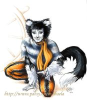 Mistoffelees the pirat by Kvitter