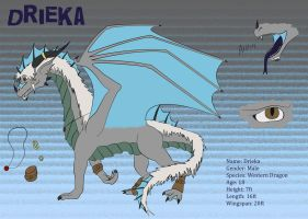 Drieka Ref Sheet by Drieka