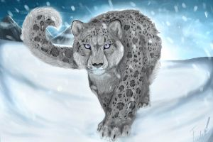 Snow leopard by FudeWolffy