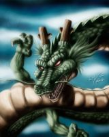 Shen Long By LMV01 by lmv01