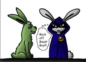 Bunny Raven and Beast Boy by bbfan77