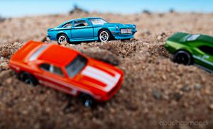 Safari Rally 02 by Pixcaliba