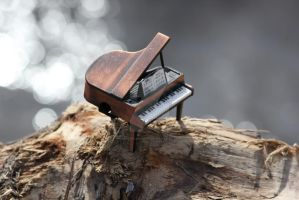 Tiny piano on a log by YamiHikariHime