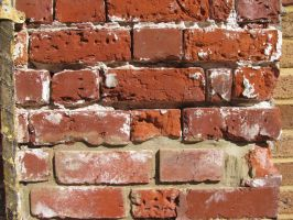 Rich Bricks by Friday-On-a-TuEsDaY