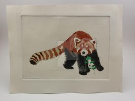 Red Panda Print - Colored In by HappyImpressions