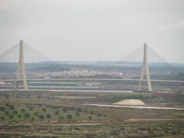 ponte by sumabell