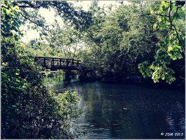 Bridge of Serenity by JDM4CHRIST