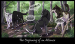 The Beginning of an Alliance by DawnFrost