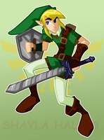 Toon Adult Link by AstroZerk