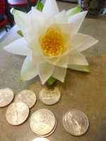 Lotus and Gold by DEATHxWISH143