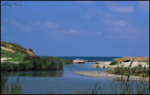 And the river meets the sea by ShlomitMessica
