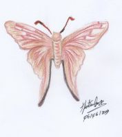 Our butterfly by Yma-Lynd