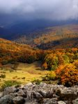 une autumn vignette by BobRock99