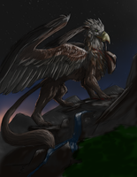 S-adoerak-young gryphon-1 by bolthound