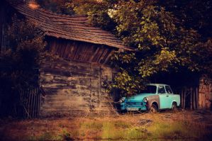 Little Blue Trabby by ralucsernatoni