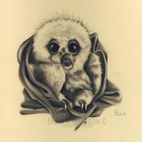 Baby owl by Warnstrom