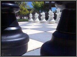 Chess by genelle
