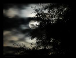 Look Here I am Said The Moon...and there she was by Arawn-Photography